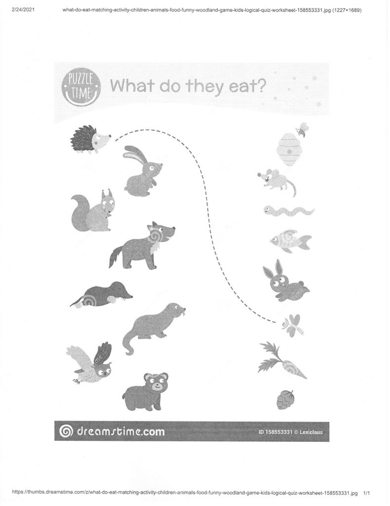 What Do They Eat?